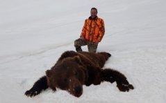 bear7.jpeg